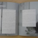 Japanese MOON Promo Book 8