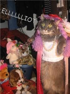 MMM Twitter Comp Melissa Gill