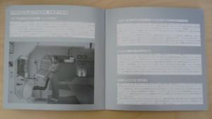 Japanese MOON Promo Book 6